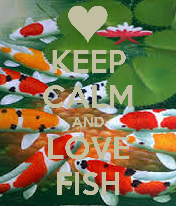 Keep calm and love fish keep calm and carry on image for I love the fishes