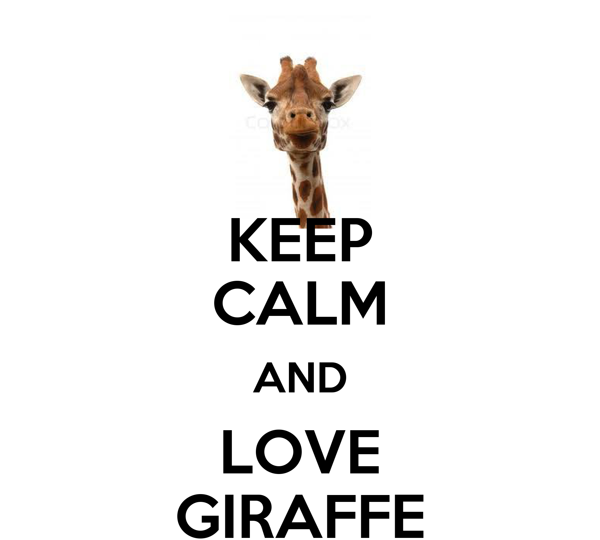 KEEP CALM AND LOVE GIRAFFE Poster - 240.0KB