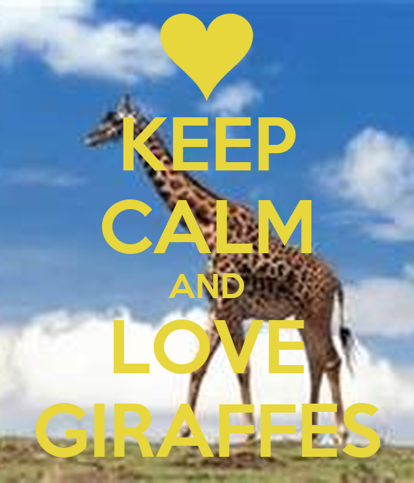 KEEP CALM AND LOVE GIRAFFES Poster - 300.6KB