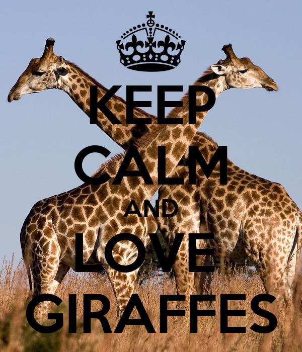 KEEP CALM AND LOVE GIRAFFES Poster - 619.1KB