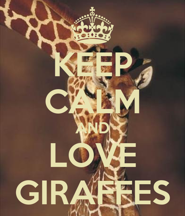 KEEP CALM AND LOVE GIRAFFES Poster - 312.5KB