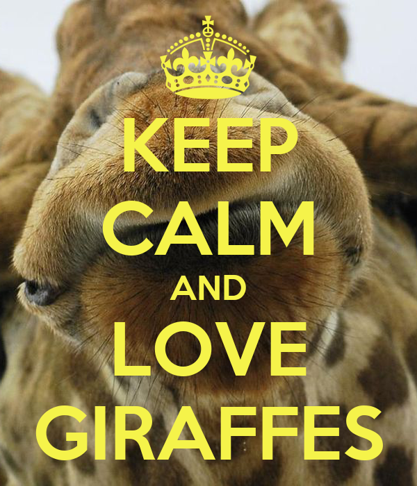 KEEP CALM AND LOVE GIRAFFES Poster - 537.7KB