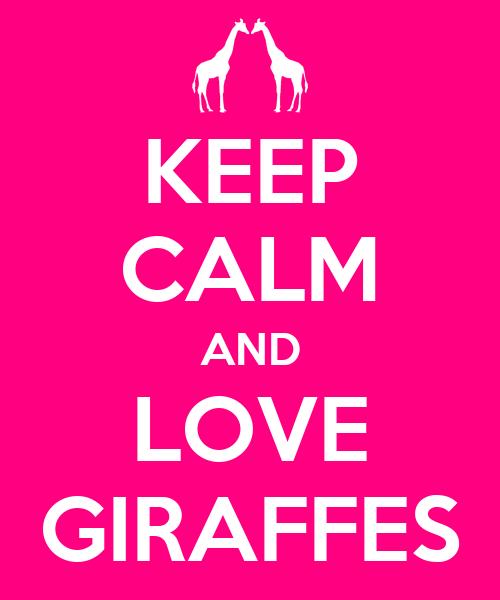 KEEP CALM AND LOVE GIRAFFES - - 25.3KB
