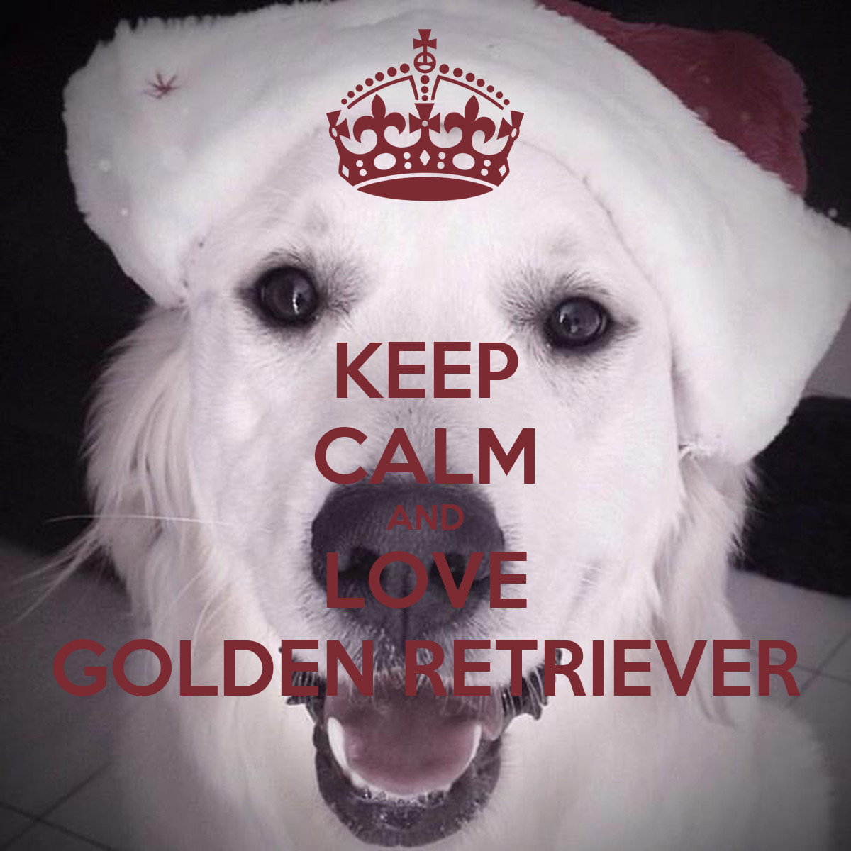KEEP CALM AND LOVE GOLDEN RETRIEVER Poster | frimoussedog ...