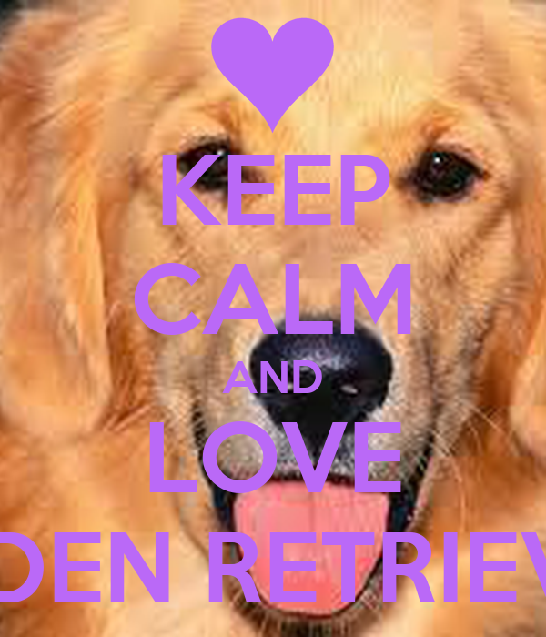 KEEP CALM AND LOVE GOLDEN RETRIEVERS! Poster | BROOKE ...