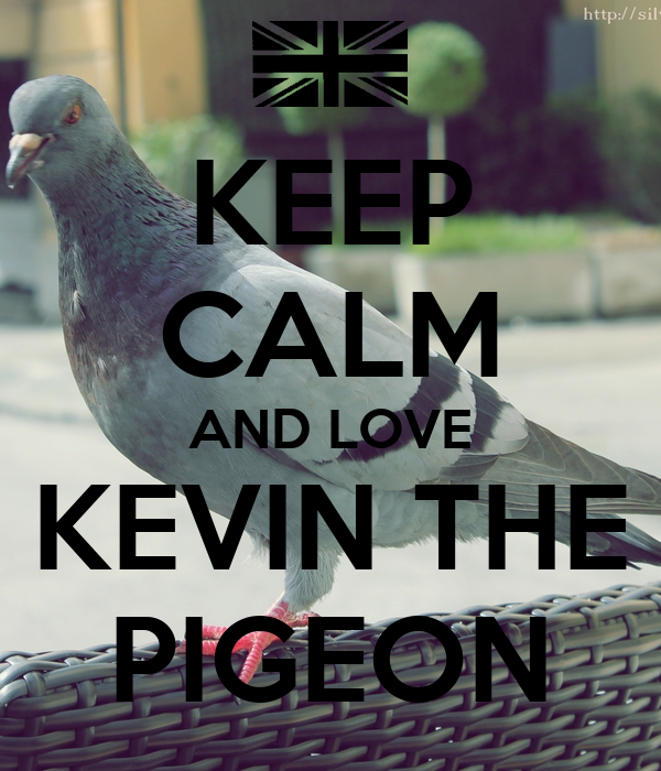 Dee's Spielecke - Seite 6 Keep-calm-and-love-kevin-the-pigeon-12