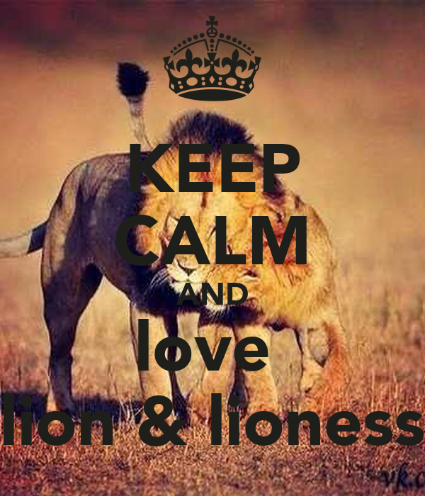 England Lionesses Wallpaper And Love Lion Lioness