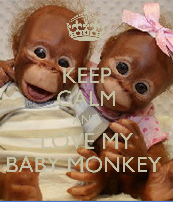 keep calm and love my baby monkey