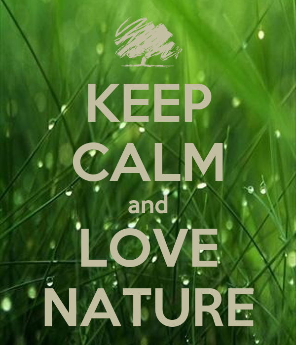 keep calm and love nature keep calm and carry on image