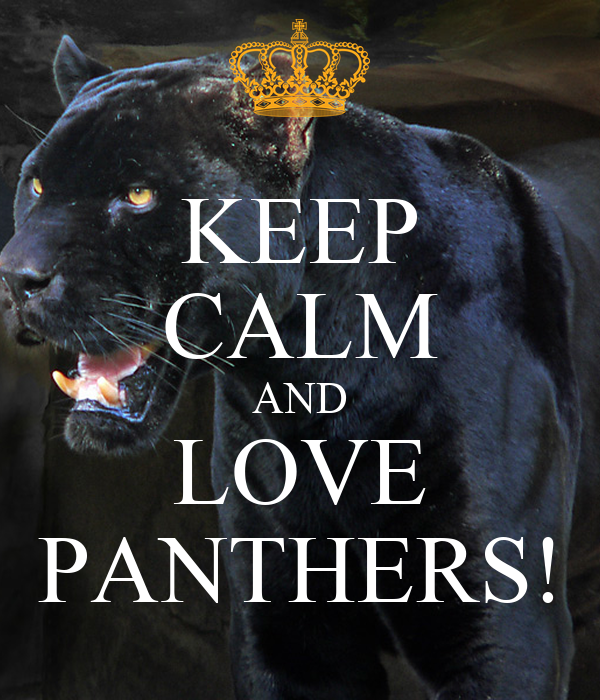 Pin On I Love Panthers