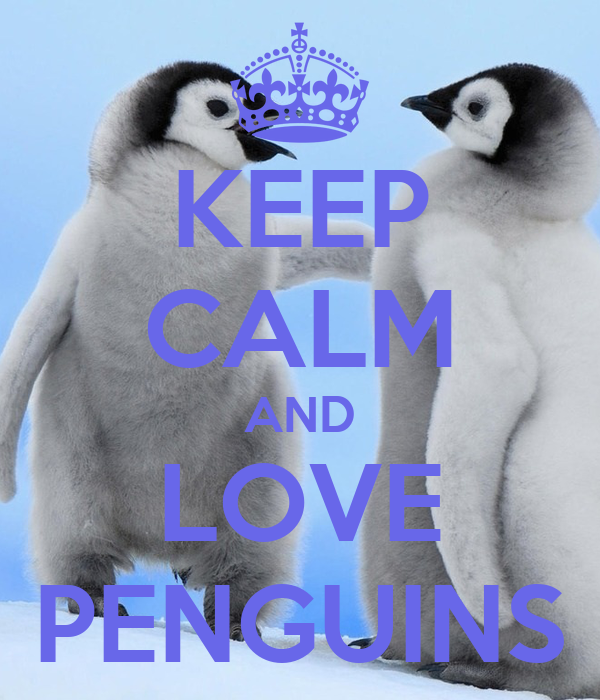 keep calm and love penguins poster tim keep calmomatic