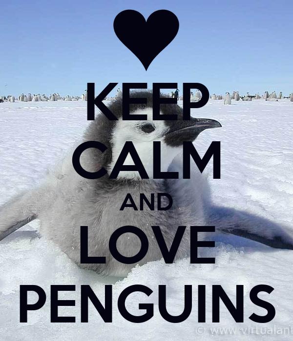 keep calm and love penguins poster jordan keep calmo