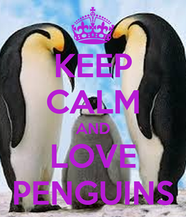 keep calm and love penguins poster hhh keep calmomatic