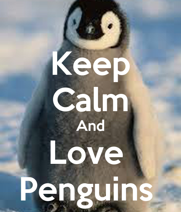 keep calm and love penguins poster lil lenny keep calm