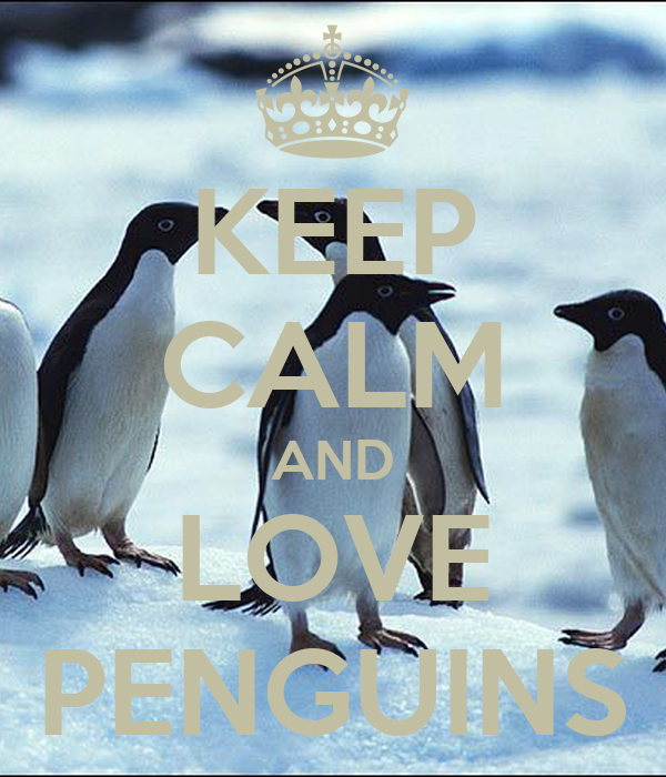 keep calm and love penguins poster gina keep calmomatic