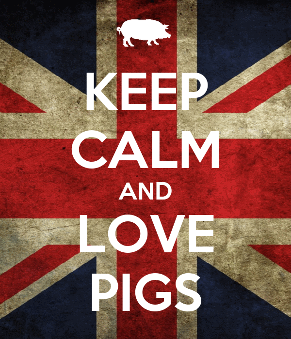 KEEP CALM AND LOVE PIGS Poster   molly   Keep Calm-o-Matic