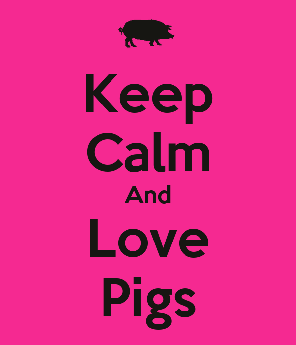 Keep Calm And Love Pigs - KEEP CALM AND CARRY ON Image ...
