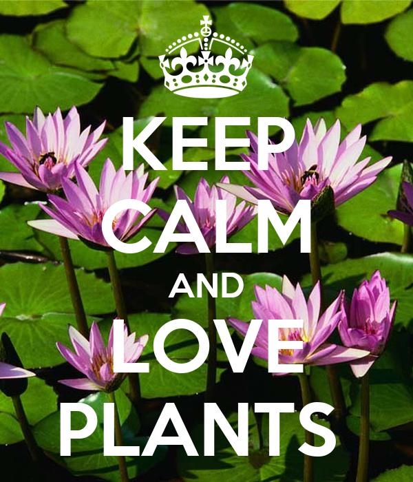 Resultado de imagem para I love plants