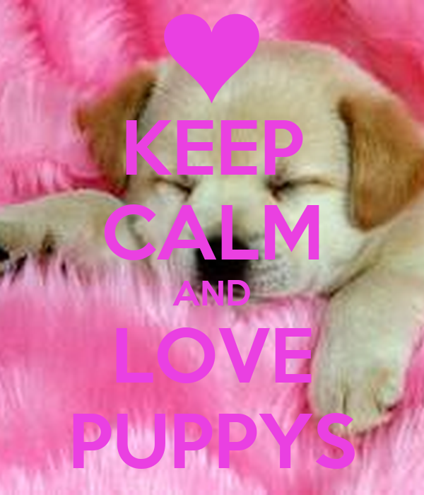 Keep Calm Love Puppys Poster Carrie Mansell