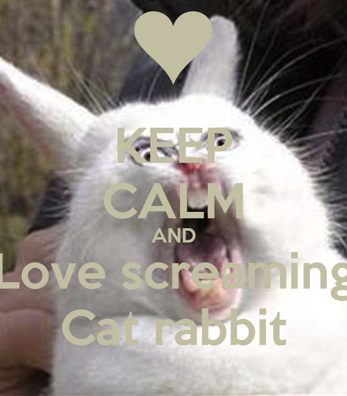 Keep Calm And Love Sam And Cat Keep Calm And Love Screaming
