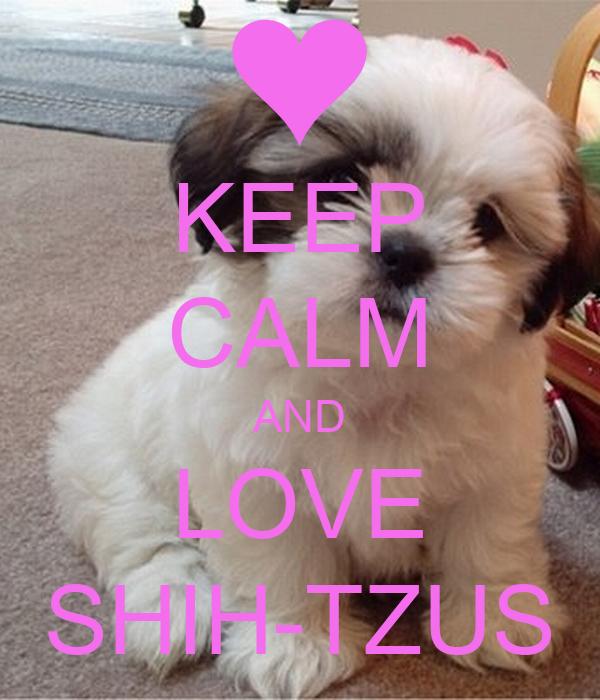 Keep Calm And Love Shih Tzus Poster Orlaith Keep Calm