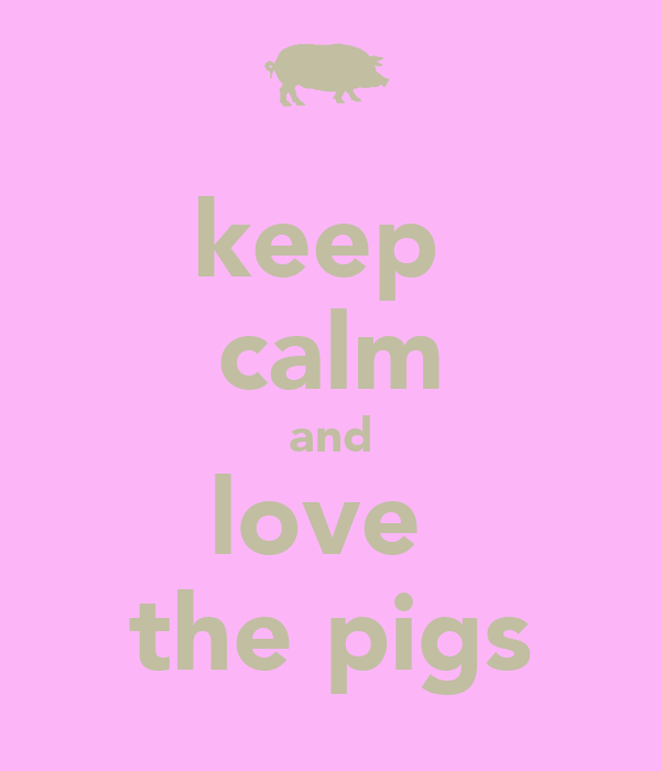 keep calm and love the pigs - KEEP CALM AND CARRY ON Image ...