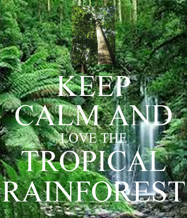 Tropical Shirts Men