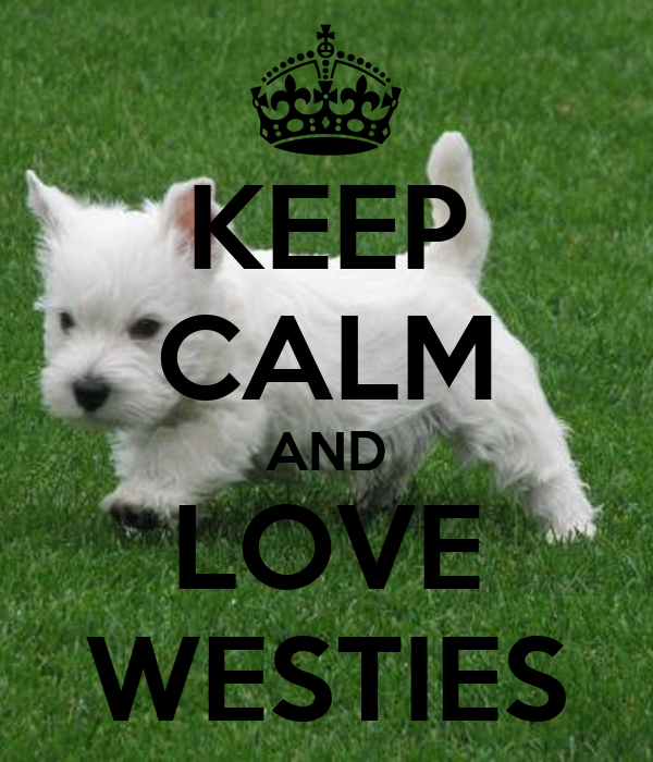 keep calm and love westies poster bengoodwin keep calm. Black Bedroom Furniture Sets. Home Design Ideas