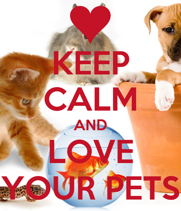 Petfinder Makes Adopting Easier. Create and save your adopter profile. Save and manage your pet searches and email communications. Learn helpful pet care tips and receive expert advice.