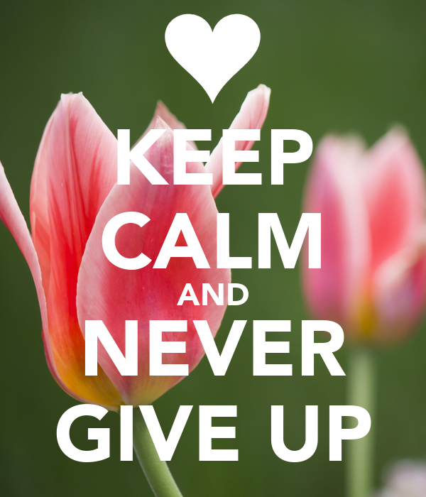 KEEP CALM AND NEVER GIVE UP - KEEP CALM AND CARRY ON Image ...