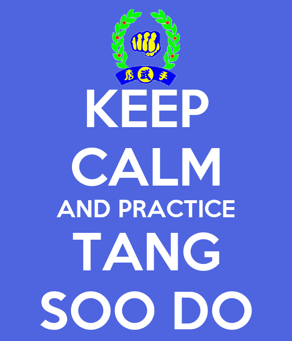 what tang soo do means to me essay