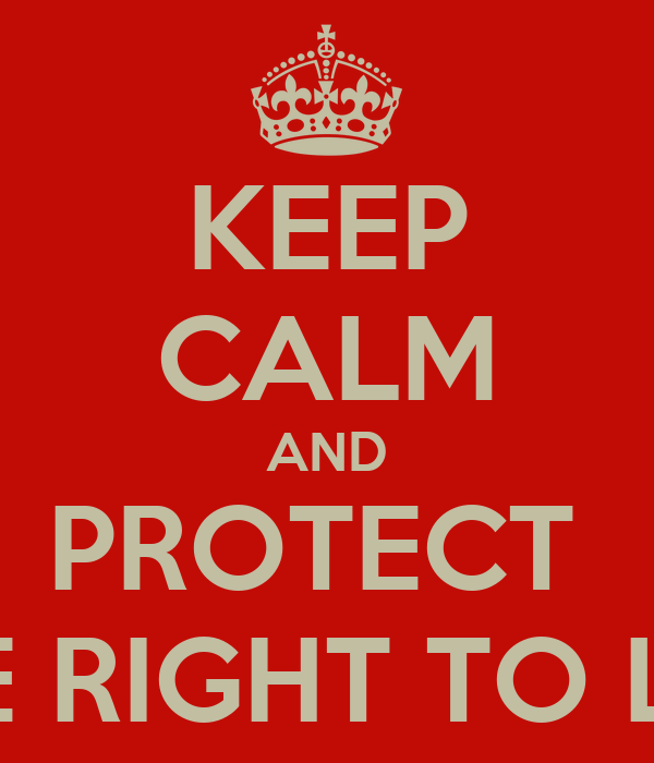 the right of life and protection Examples of fundamental inalienable rights include the right to life, liberty and   although the government can pass laws to protect your human rights, human.