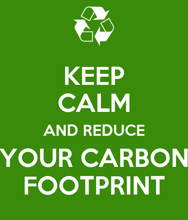 reducing the carbon footprint essay Carbon footprint (essay sample) instructions: the essay was about concerns over the rising incidence of carbon footprints source content: reducing carbon footprint name couse institution conservation and global warming are becoming heated topics globally.