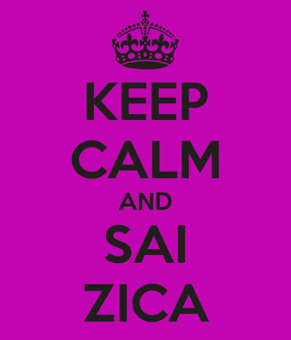 keep-calm-and-sai-zica-4.png
