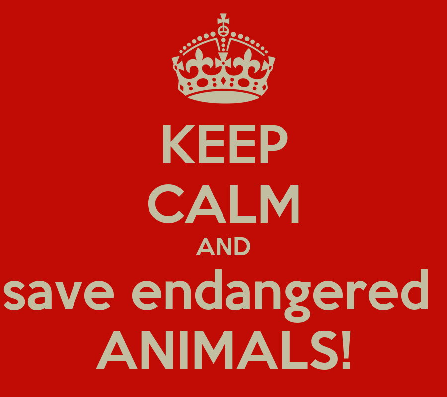 how to save endangered animals It will be up to ordinary citizens and environmental groups to save these   educate your family about endangered species in your area it's not.