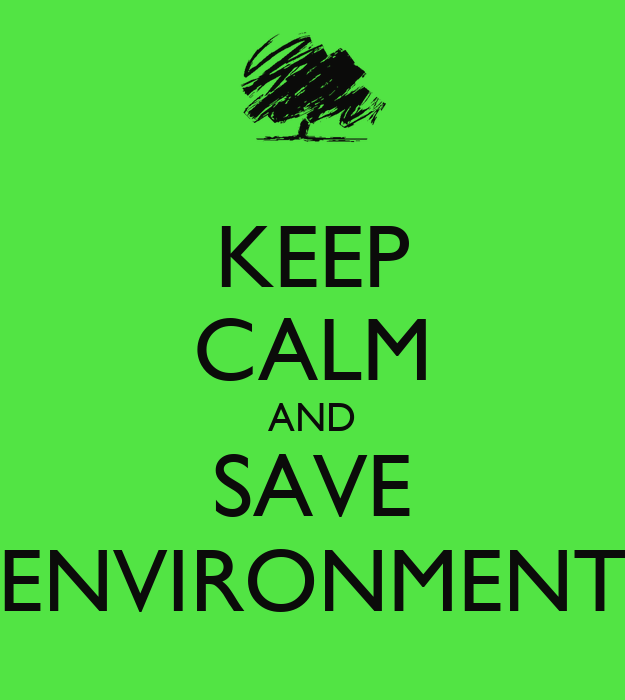 an essay on save the environment