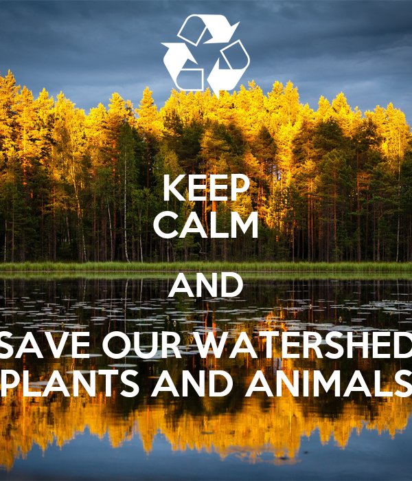 essay on save plants and animals It will cost billions of dollars to save all the world's threatened what is the point of saving endangered species there are plants and animals that we eat.