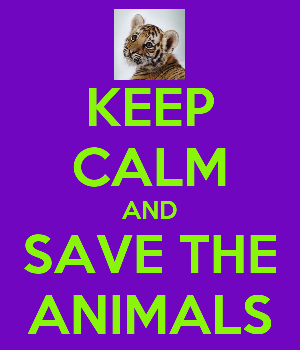 KEEP CALM AND SAVE THE ANIMALS - KEEP CALM AND CARRY ON ...