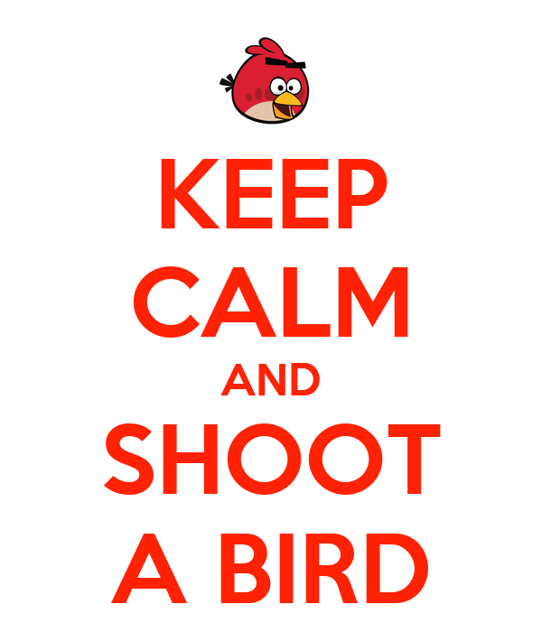 Keep calm and shoot a bird keep calm and carry on image generator
