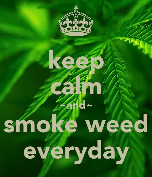 keep calm and smoke weed everyday poster skjdks keep