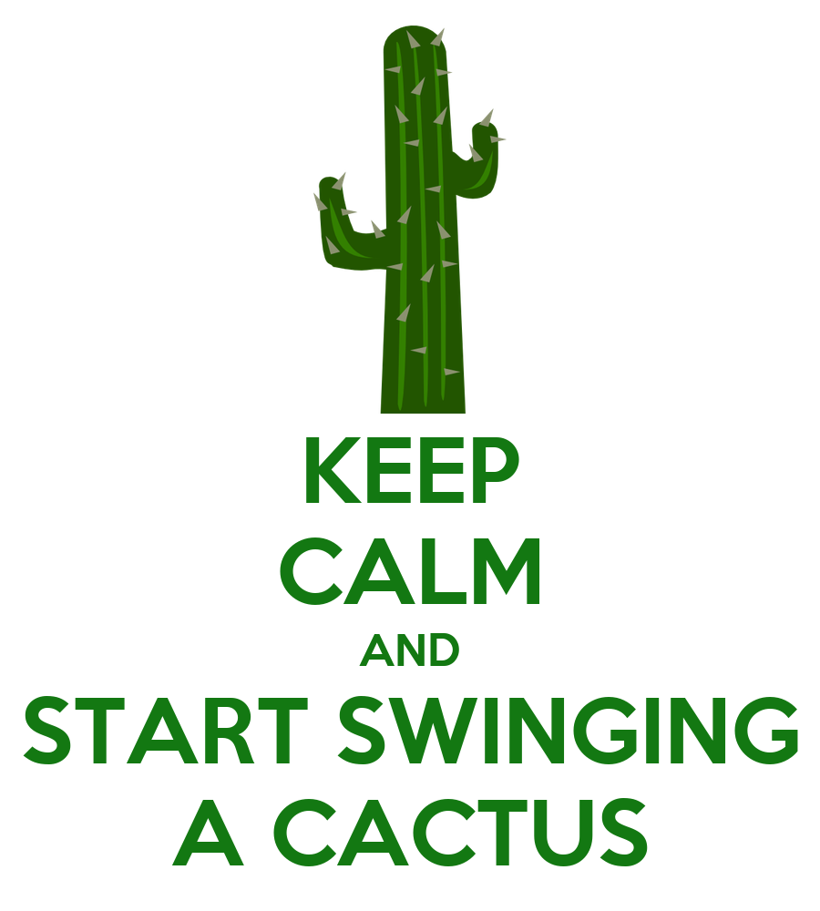 how to keep a cactus