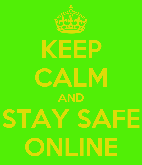 Issues On The Internet Safty Skylar Donnell Internet Safety