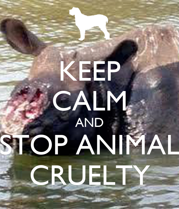 Animal abuse posters - photo#12