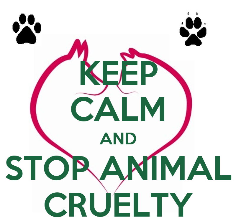 is it cruel to keep animals It's cruel to keep reptiles as pets by and expertise behind the keeping of dogs and cats over thousands of years does not prevent too much abuse of those animals.