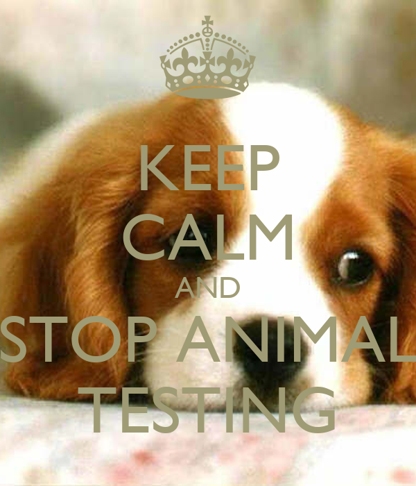 animal testing to keep animal Ban random source animal dealers for years, congress has considered legislation that would eliminate random source class b dealers these dealers, which sell animals from pounds, shelters, and individuals to research facilities, have a sordid history of illegal acquisition of animals and improper treatment of dogs and cats housed at their.