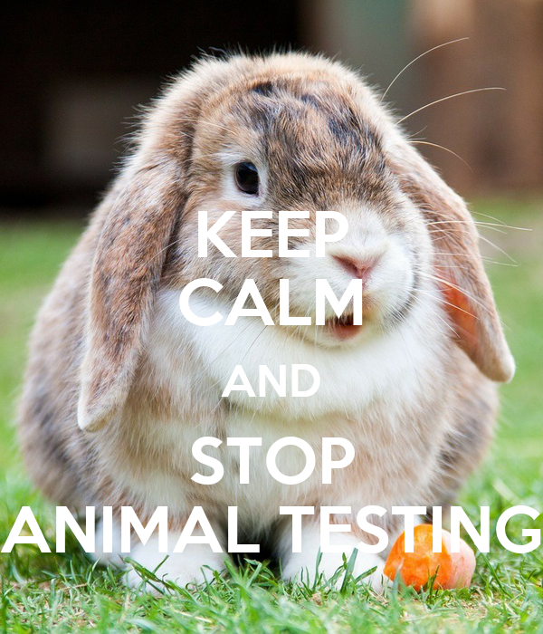 Why We Should Accept Animal Testing