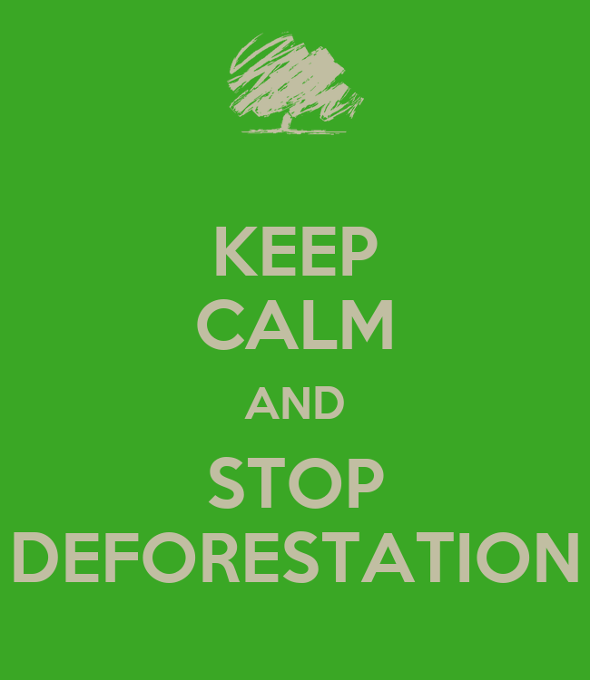 stop deforestation Deforestation threatens life as we know it deforestation generates about 20 percent of greenhouse gasses, which contribute to global warming and climate change.