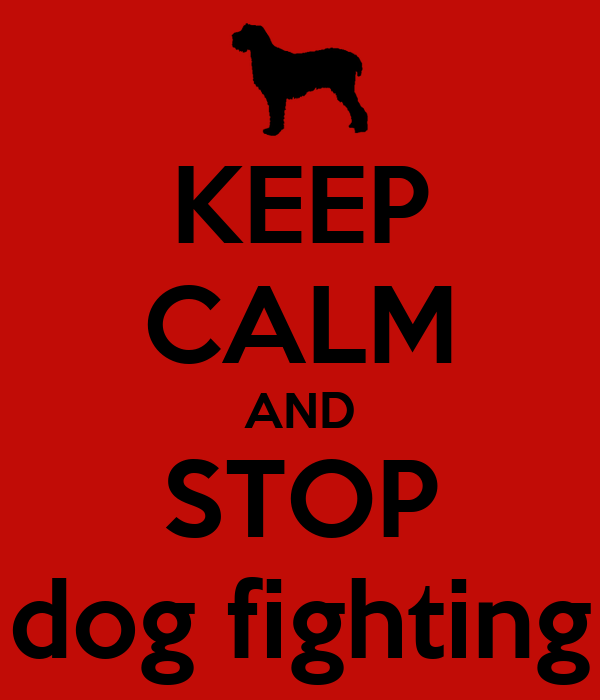 how to help stop dog fighting Dog fighting has been illegal for 180 years but we're still investigating cases today find out what you can do to help end this barbaric 'sport.