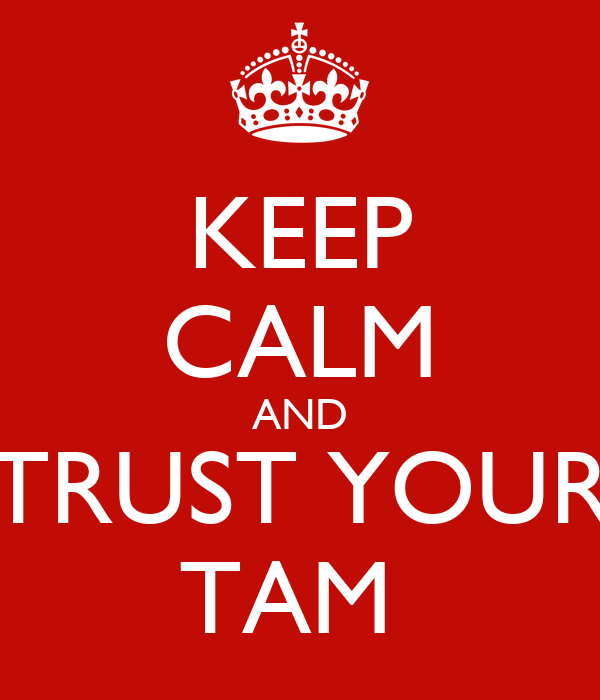 trust and tam in online shopping Particularly, tam can be used to analyze the purchase intentions of internet  users and its applications  trust & tam in online shopping: an integrated  model.