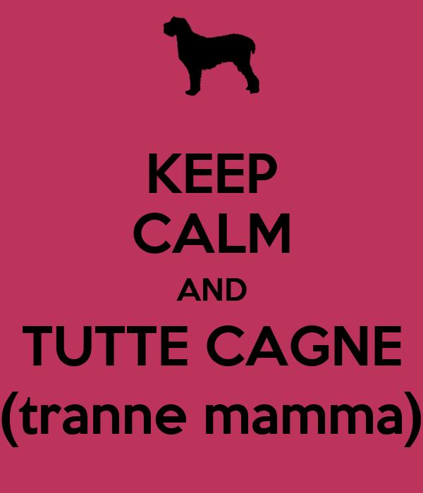 keep calm and tutte cagne tranne mamma